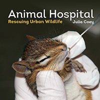 Summer Reading: Animal Hospital