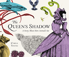 Queen's Shadow